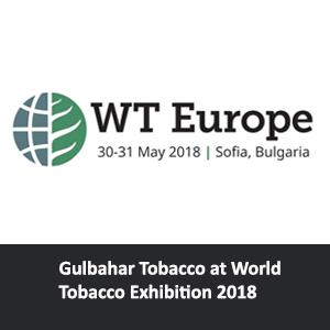WT Europe